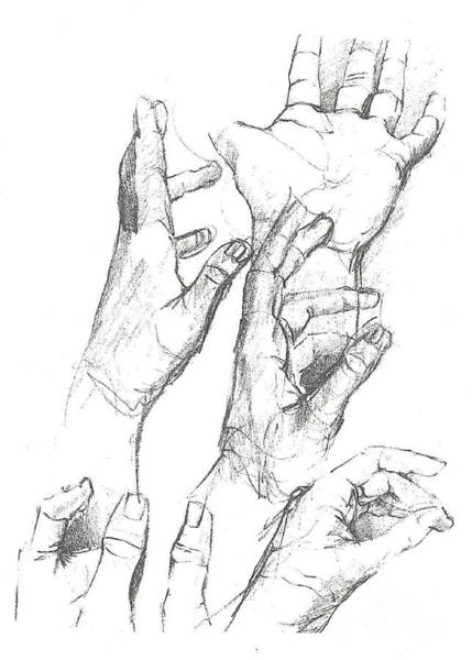 Drawing - Hands by Denise F Fulmer