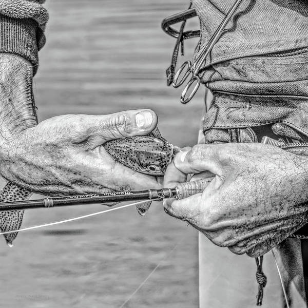 Wall Art - Photograph - Hands Of A Fly Fisherman Monochrome by Jennie Marie Schell