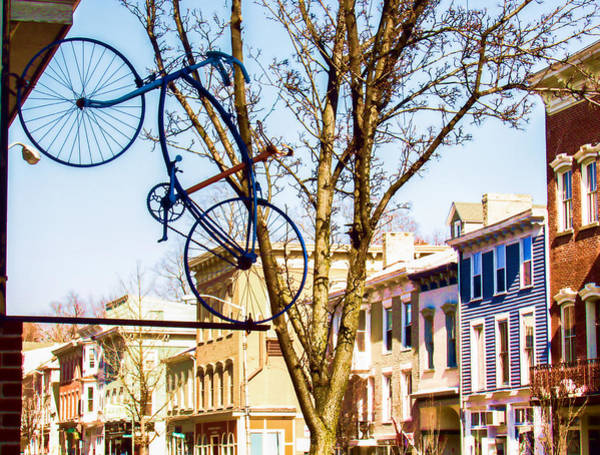 Photograph - Hanging Bicycle In Catskill Ny by Nancy De Flon