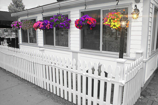 Photograph - Hanging Flower Baskets by Carlos Diaz