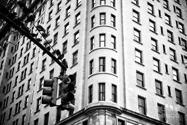 Photograph - Hanging On Central Park South by John Rizzuto