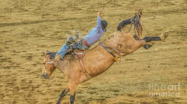 Bucking Bronco Digital Art - Hanging On Rodeo Bronco Busting by Randy Steele