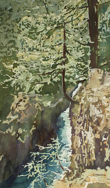 Painting - Hanging Out At Opal Creek by Jenny Armitage