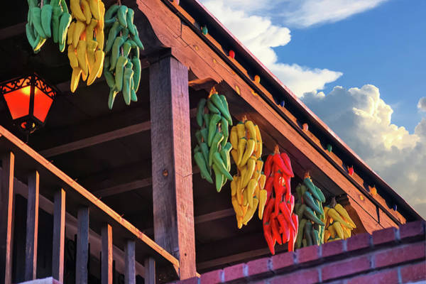 Photograph - Hanging Peppers In Old Town Albuquerque New Mexico  by Gregory Ballos