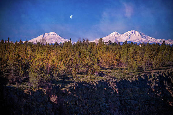 Photograph - Hanging Under The Moon by Lynn Bauer