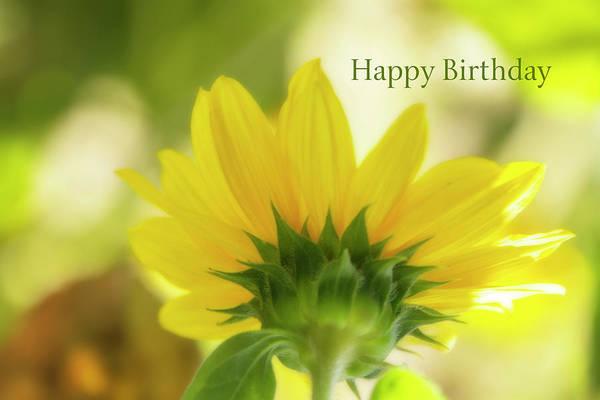 Wall Art - Digital Art - Happy Birthday Sunflower by Terry Davis