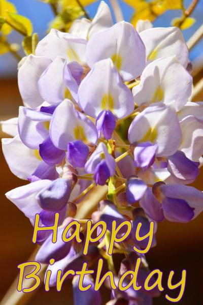 Photograph - Happy Birthday Wisteria 2 by Lisa Wooten