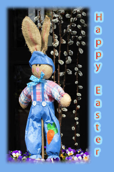 Photograph - Happy Easter Bunny Boy Decoration Greeting Card by Mother Nature