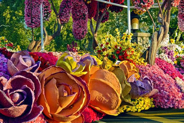 Tournament Of Roses Photograph - Happy Flowers by David Zanzinger