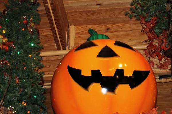 Pumkin Wall Art - Photograph - Happy Halloween by G Berry