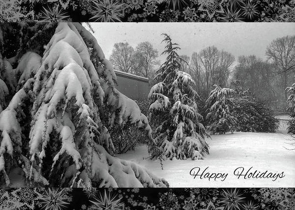 Photograph - Happy Holidays by Robert G Kernodle
