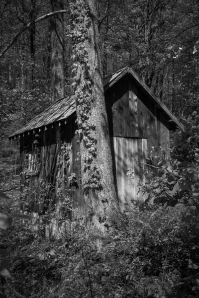 Three Little Kittens Wall Art - Photograph - Happy Hollow Shed B W by Teresa Mucha
