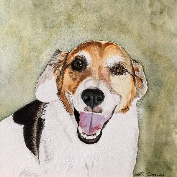 Painting - Happy Jack by Sonja Jones