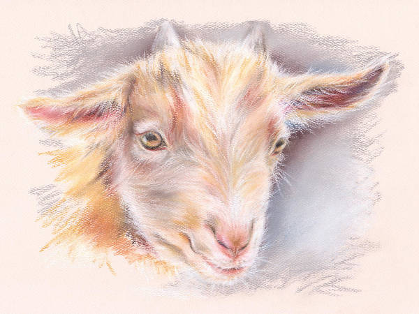 Pastel - Happy Little Goat by MM Anderson