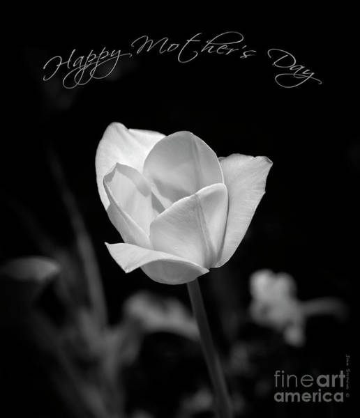 Wall Art - Photograph - Happy Mother's Day Floral Black And White by John Stephens