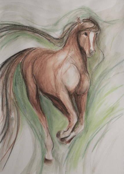 Warmbloods Drawing - Happy Prance by Jennifer Fosgate