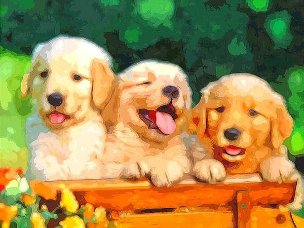 Golden Retriever Digital Art - Happy Puppies by Maciek Froncisz
