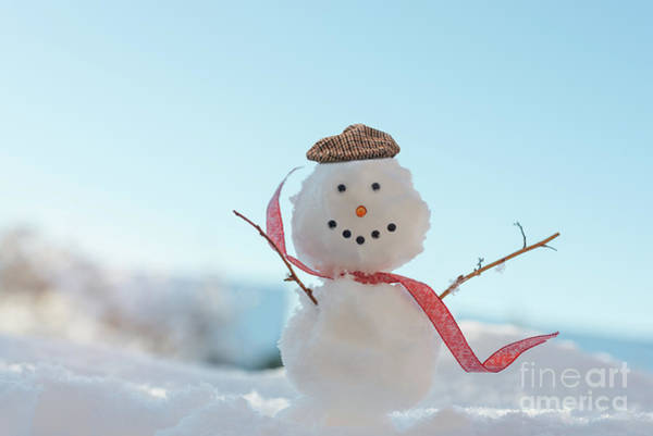 Wall Art - Photograph - Happy Smiling Snowman  by Amanda Elwell