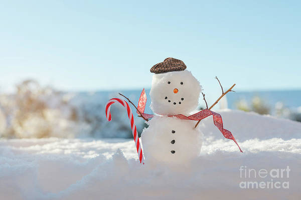 Wall Art - Photograph - Happy Smiling Snowman With Candy Cane by Amanda Elwell