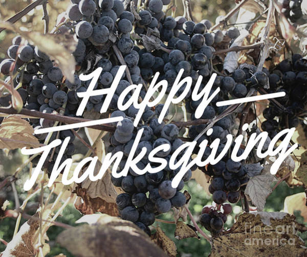 Photograph - Happy Thanksgiving by Laura Kinker