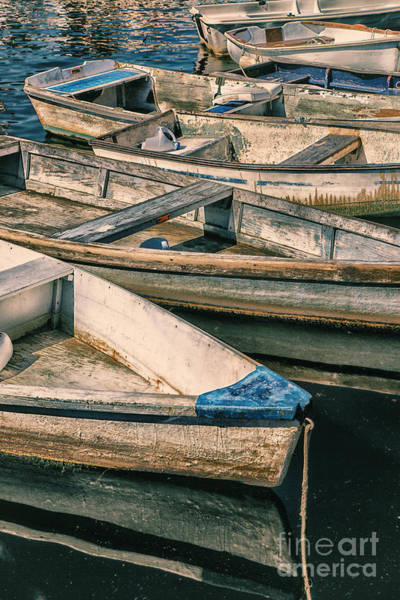 Photograph - Harbor Boats by Timothy Johnson
