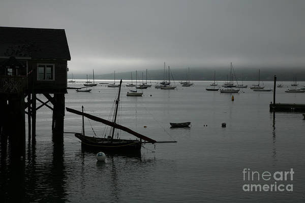 Photograph - Harbor Fog by Timothy Johnson