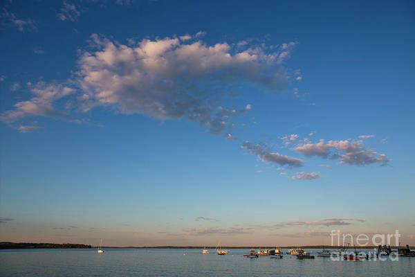 Wall Art - Photograph - Harbor In Lincolnville,maine by Diane Diederich