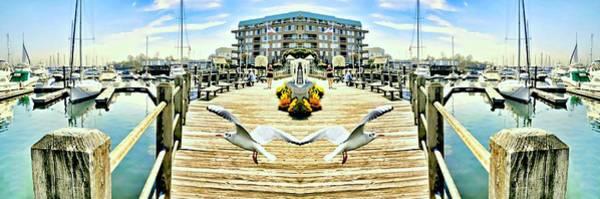 Stamford Photograph - Stamford Landing Marina by Diana Angstadt