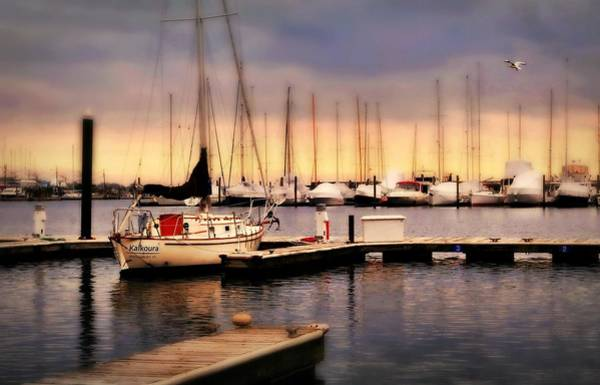 Wall Art - Photograph - Harbor Point Stamford by Diana Angstadt