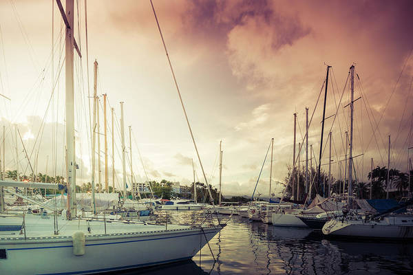 Photograph - Harbor by Radek Spanninger