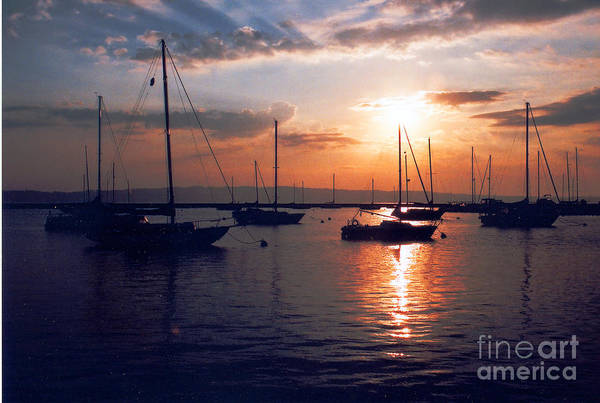 Photograph - Harbor Sunrise by Crystal Nederman