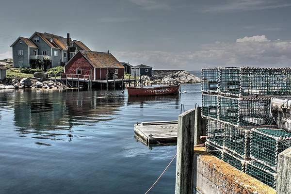 Photograph - Harbour Rest by David Matthews