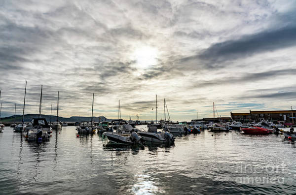 Photograph - Harbour Sunrise by Colin Rayner