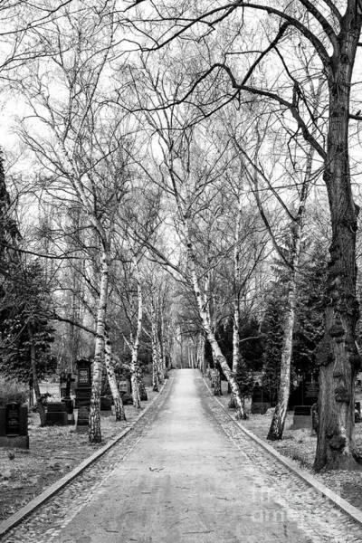 Photograph - Hardest Walk by John Rizzuto