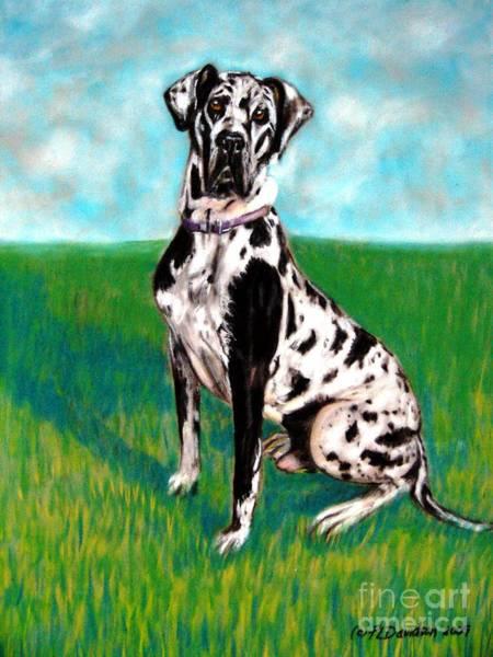 Black Great Dane Painting - Harlequin Great Dane by Patricia L Davidson