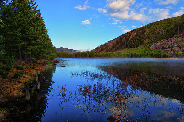 Photograph - Harlequin Lake by Greg Norrell