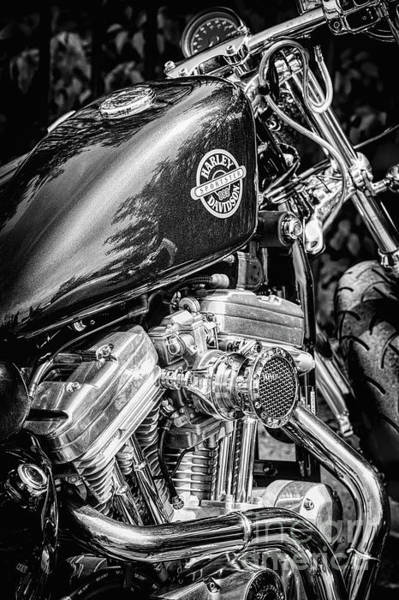 Wall Art - Photograph - Harley Sportster by Tim Gainey
