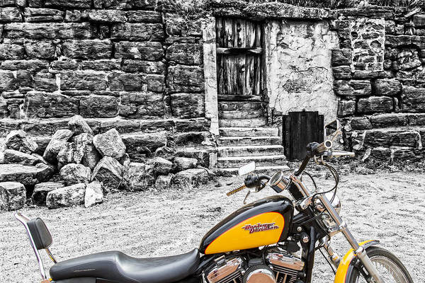 Photograph - Harley And Stone by Jim Moss