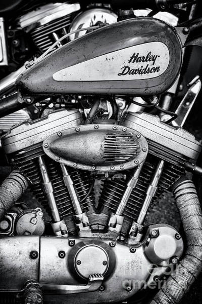 Wall Art - Photograph - Harley Bobber by Tim Gainey