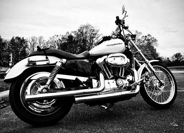 Photograph - Harley Davidson by Bill Cannon