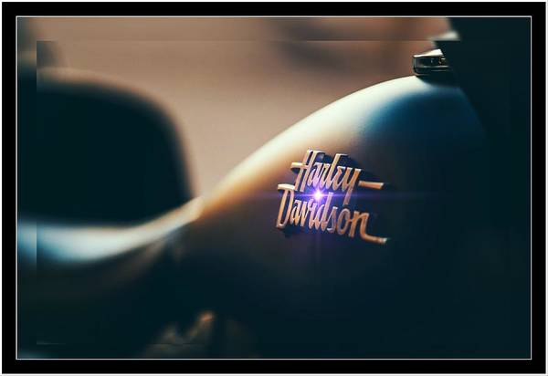 Photograph - Harley Davidson Cycle by Ericamaxine Price