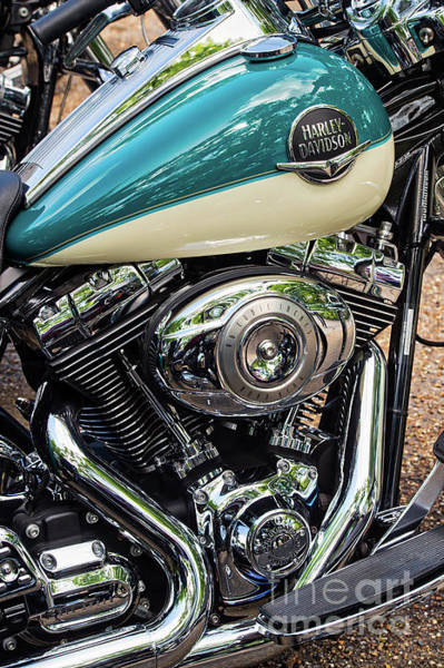Wall Art - Photograph - Harley Davidson Road King by Tim Gainey