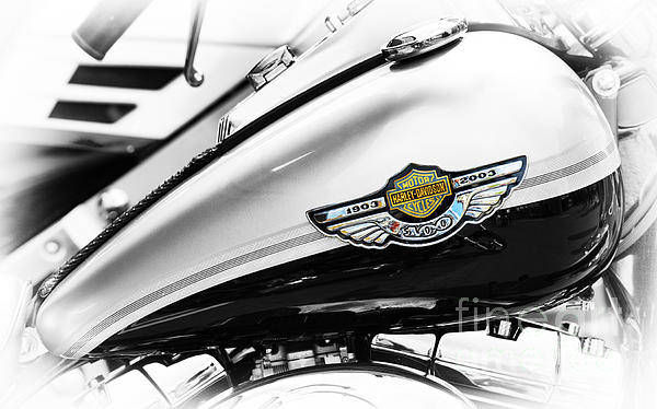 Photograph - Harley Heritage by Tim Gainey