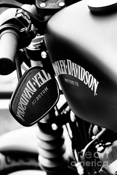 Harley Davidson Black And White Wall Art - Photograph - Harley Iron 883 by Tim Gainey