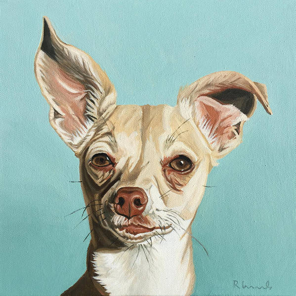 Yorkshire Terrier Painting - Harley by Nathan Rhoads