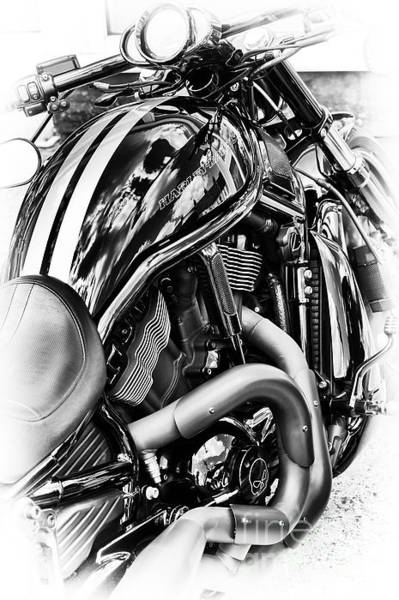 Harley Davidson Black And White Wall Art - Photograph - Harley Night Rod by Tim Gainey