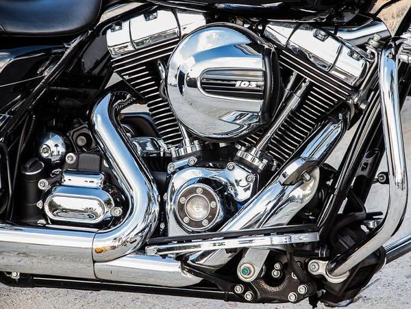 Photograph - Harley by Richard Goldman