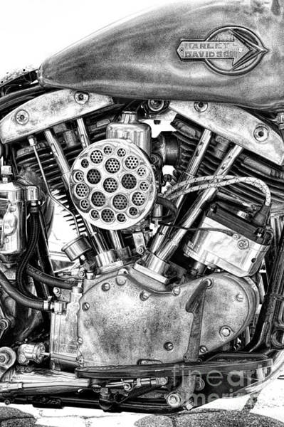 Harley Davidson Black And White Wall Art - Photograph - Harley Shovelhead by Tim Gainey