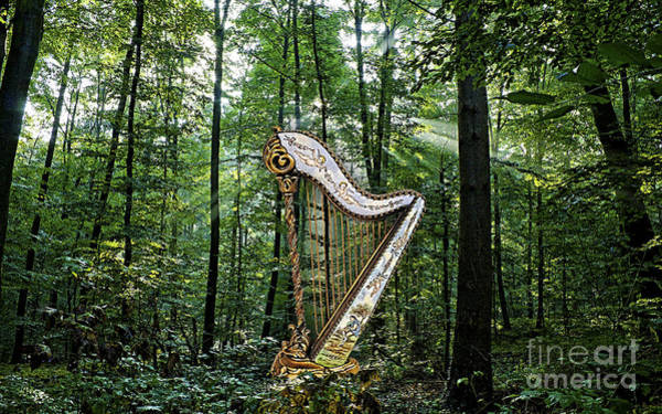 Harp Mixed Media - Harp In The Woods by Marvin Blaine