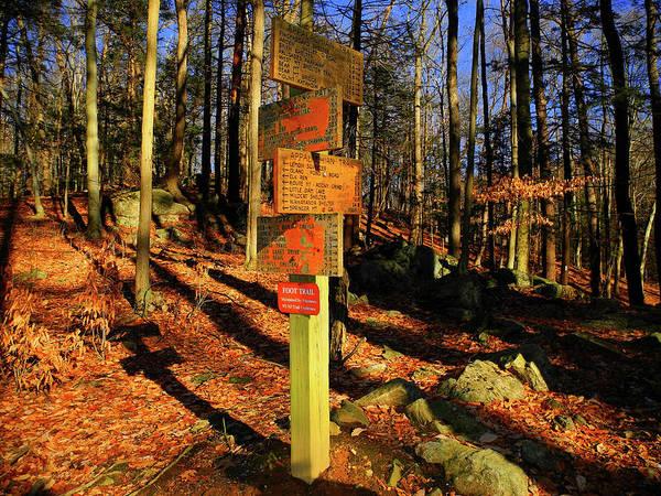 Photograph - Harriman State Park Trail Sign by Raymond Salani III